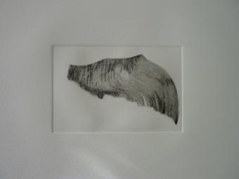 Flügelfragment_1/10