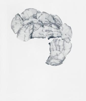 Fragment_4/2010