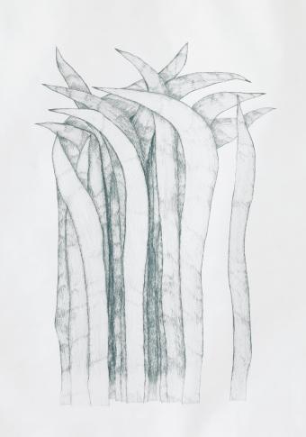 Gras_10/06