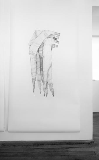 Gras_20/08