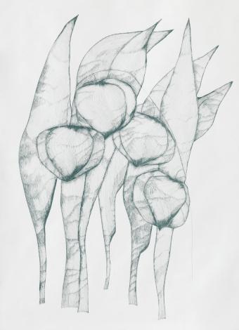 Gras_5/06