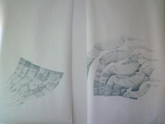 Grasstücke_12 und 13/2011